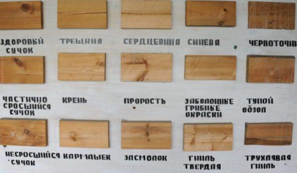 defekty-drevesiny-4395634