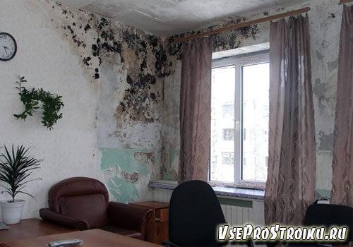 kak-izbavitsya-ot-vlazhnosti-v-kvartire2-1646966