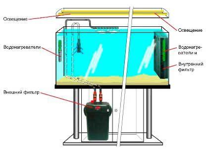 kak-ustanovit-filtr-v-akvarium3-8860539